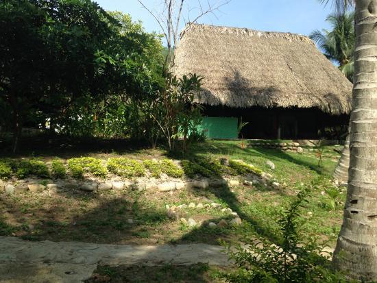 Taironaka Turismo Ecologico y Arqueologia : Cabaña