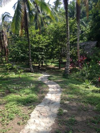 Taironaka Turismo Ecologico y Arqueologia : Entrada al Hotel