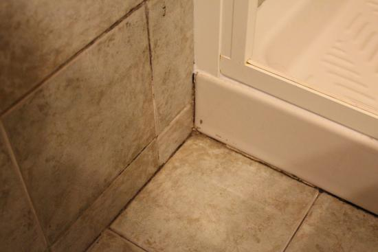 Tourist House Liberty: Shower tiles that need cleaning
