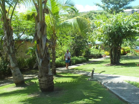 Le Phare Bleu Marina & Resort: The tropical gardens