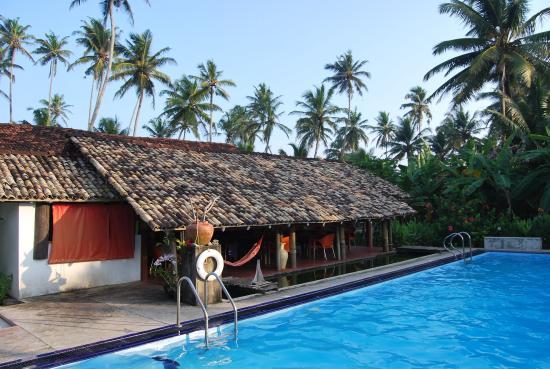 Surfing Villa: Pool