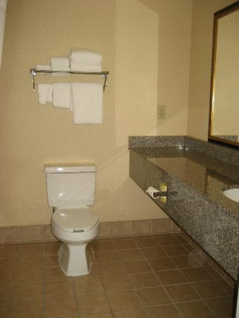 Country Inn & Suites By Carlson, Chattanooga North at Highway 153: Bathroom