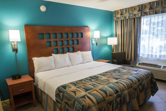 The king suite at Rodeway Inn and Suites Fort Lauderdale - Picture ...