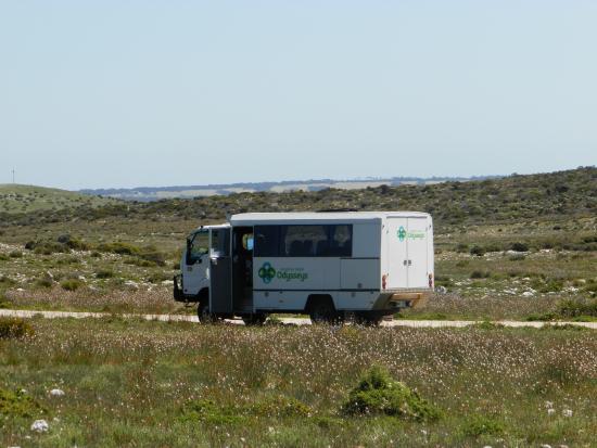 Kangaroo Island Odysseys: il nostro mezzo