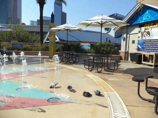Aquario Do Redtaurante Do Downtown Aquarium De Houston Out 2014 By Lourdes F C Amaral