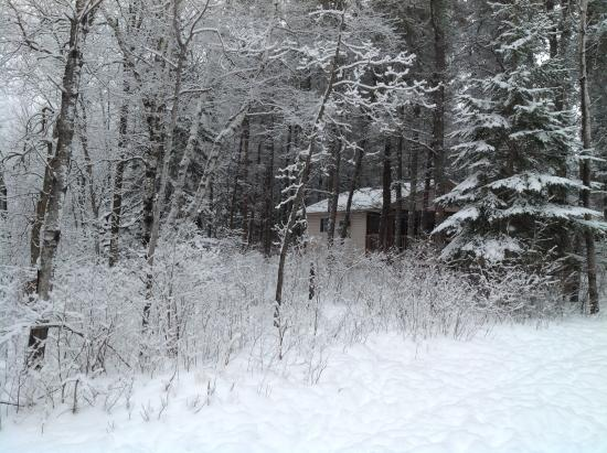 Belair, Canada: Winter at Bear Country Cottages