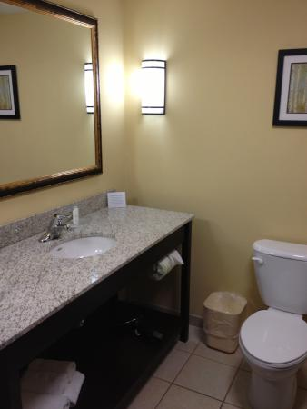 Comfort Suites Altoona: Clean bathroom