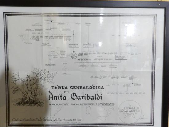 arvore genealogica picture of casa of anita laguna tripadvisor