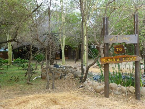 Phumula Kruger Lodge: Phumula Lodge