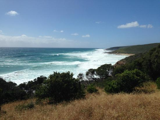 Margaret River Discovery Co. Tours: Cape to Cape walk; stunning