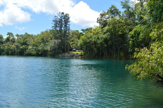 On the Wallaby Lodge: Lake Barrine