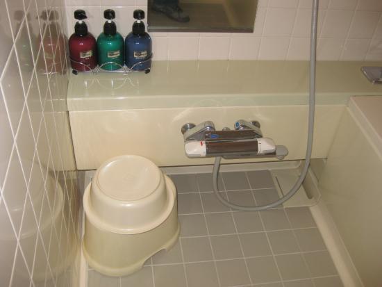 Hashidate Bay Hotel: Bathroom