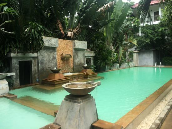 Holiday Park : Top la piscine et la végétation