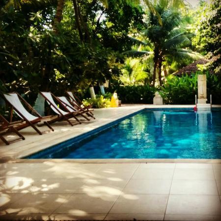Lovely Rooms Picture Of Mango Beach House The Retreat Kihim Alibaug Tripadvisor