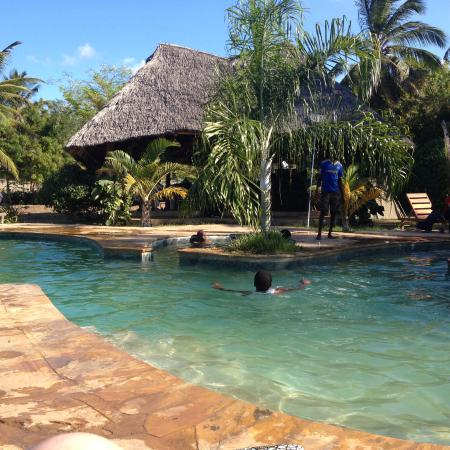 Kijiji Beach Resort: Swimmimng pool