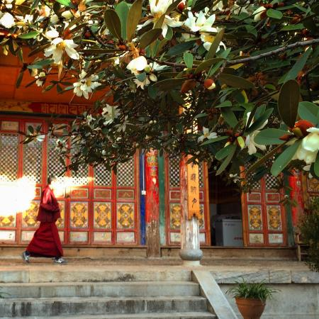 Yufeng Temple: Monks are chanting inside the Temple. Please be quiet when visiting. TQ