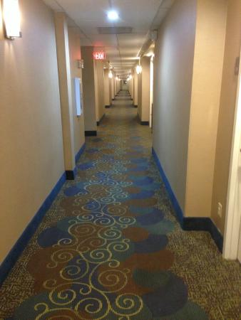Comfort Inn Muskogee: Hallway