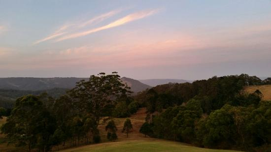 Blue Summit Cottages: View from King parrot cottage at dawn