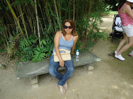 pedras jardim botanico:na selva de pedra – Picture of Botanical Garden (Jardim Botanico