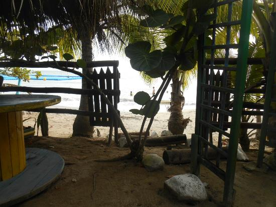 Le Tam Tam Beach : Vu du restaurant TAM TAM BEACH