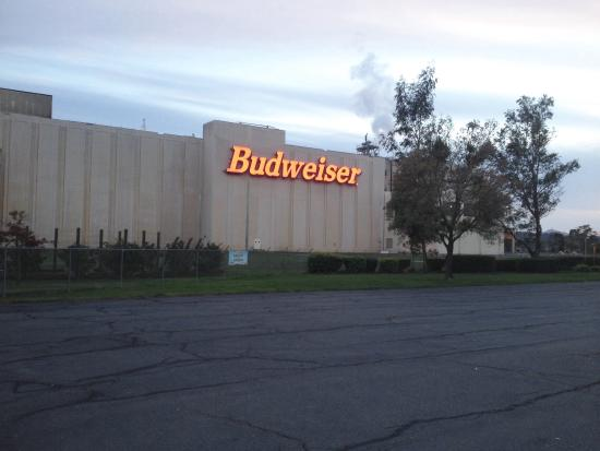 Budweiser Brewery Experience: Front of brewery