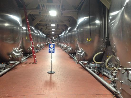 Budweiser Brewery Experience: Inside brewery
