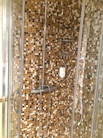 Residenza Zanardelli: La doccia
