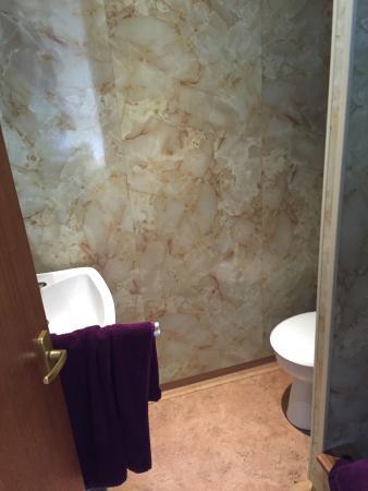 The Carlton: Toilet
