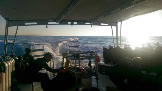 Southpoint Divers : A view of the back of the boat at the end of the dives.