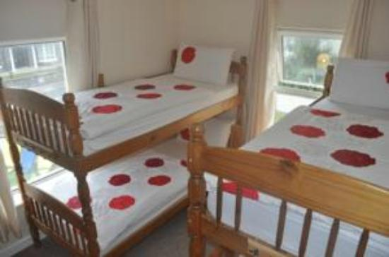 Strandhill, İrlanda: 4 Bed Mixed Sex Dorm - Shared Bathroom