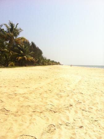 Marari Beach Garden