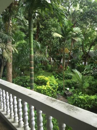 Fullmoon Beach Resort: Nice garden!