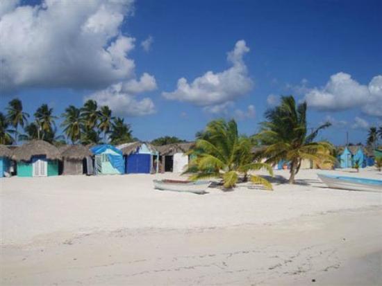 Mano juan village saona island photo de casa rural el paraiso de saona isla saona tripadvisor - Casa rural el paraiso ...