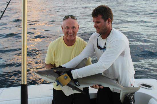 Mixed Bag Sportfishing - Offshore Adventures: Reef Shark