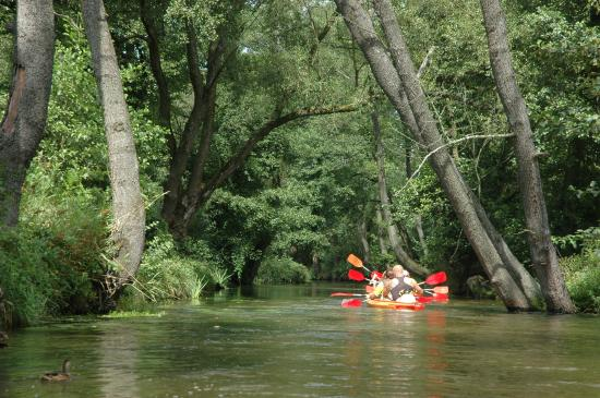 Zwierzyniec, بولندا: Kayaking on Wieprz river