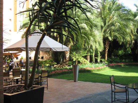 Hyatt Regency Johannesburg : Garten 1