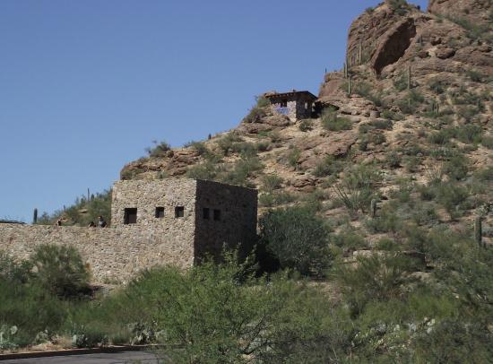 Starr Pass Golf Suites: Desert tours