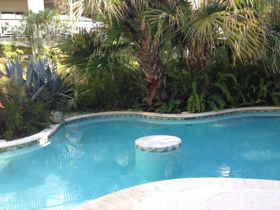 Royal West Indies Resort: The very back of quiet pool.  There are two sections to the private pool.  Te back is for two pe