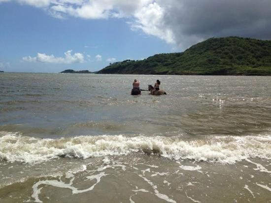 Villa Beach Cottages: Horseback riding in the ocean!