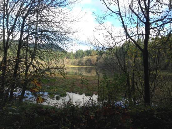 Tiger Mountain : Tradition Lake