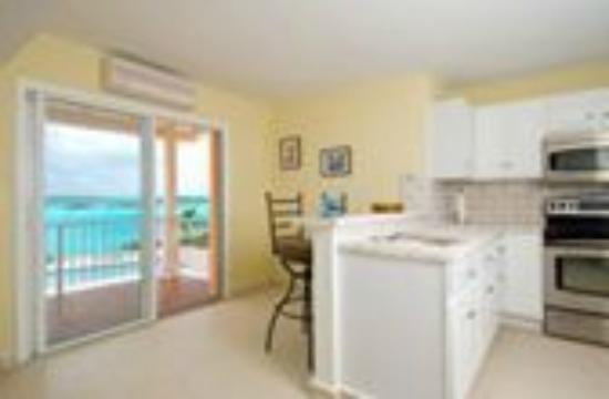 Breezy Palms Villa: Kitchen in Separate Apartment Area