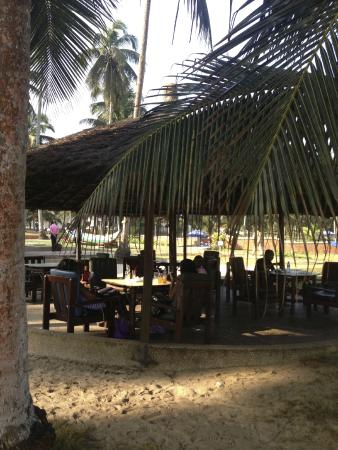 Coconut Grove Beach Resort: Dining