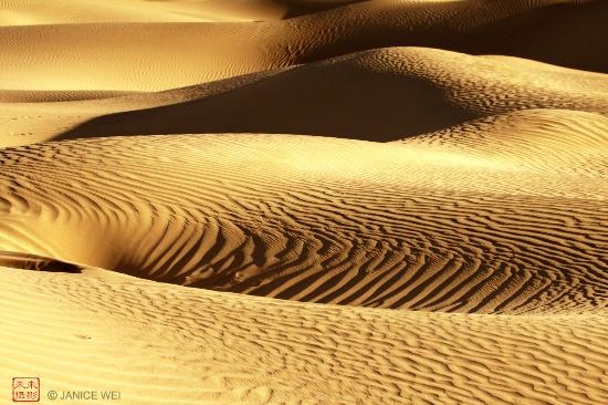 Death Valley National Park, Californië: Curves  -  Mesquite Flat Sand Dunes