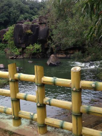 Kanyakumari District, Indien: Surrounding the falls