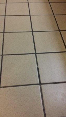 Comfort Inn & Suites Redwood Country: Dirty Bathroom Floor