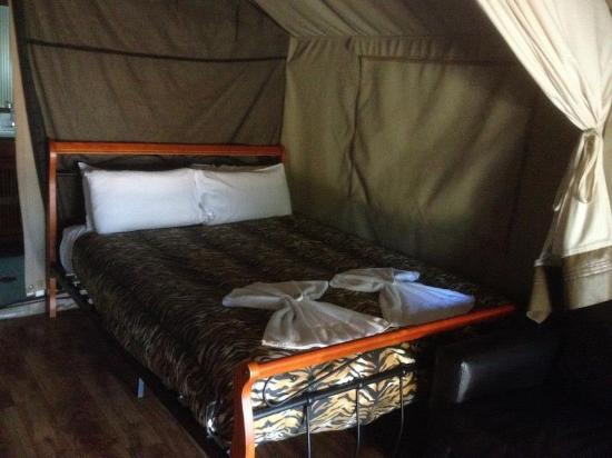 Discovery Parks - Dubbo : Glamping