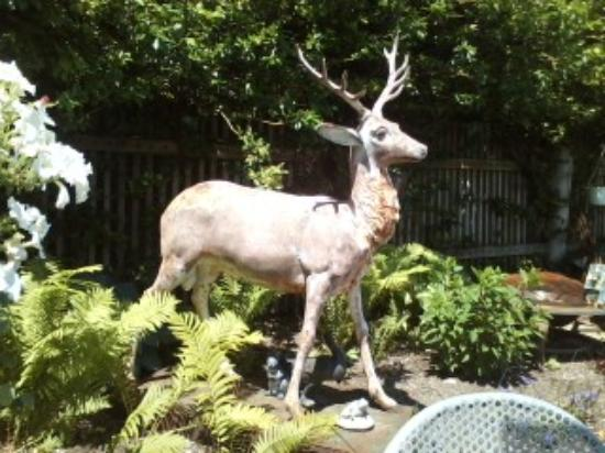 The North End Eatery: Deer statue in outside seating