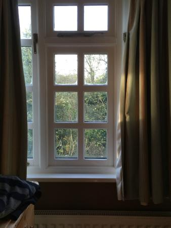 Orchard Pond Bed and Breakfast: Bedroom window and view