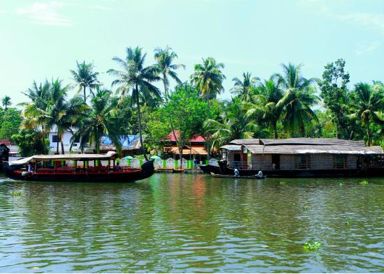 Sreevalsam Inn : Long view towards the property