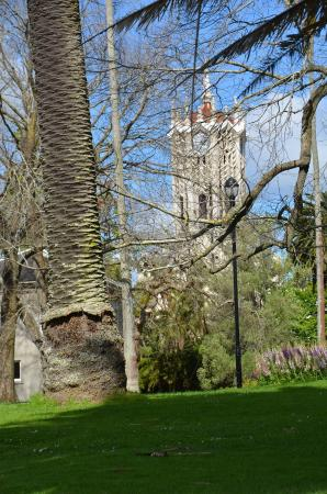 Albert Park: University chapel through the trees